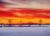 Winter Sunrise DSCN49145-7