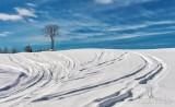 Snowmobile Tracks On Snowy Hill DSCN49484