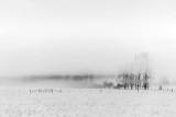 Landscape In Fog P1590154