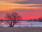 Sunrise Along Irish Creek DSCN52063
