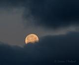 2021 Worm Moon DSCN52476