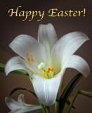 Happy Easter DSCF01326