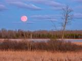 2021 Pink Moon Setting DSCN55556