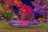 Centennial Park Fountains At Night P1600174