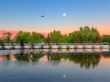 Heron & Moon Over The Le Boat Fleet DSCN60515