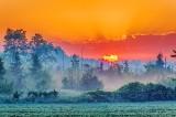 Sunrise Beyond Ground Fog P1610004-8
