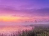 Misty Foggy Otter Creek At Sunrise DSCN64507