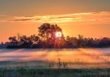 Sunrise Ground Fog DSCN66440