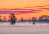 Sunrise Ground Fog DSCN66409-11