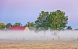 Barn & Trees In Ground Fog 90D-00664