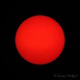 20210719 Red Sun P1040155