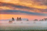Ground Fog At Sunrise 90D-01704