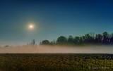 Sturgeon Blue Moon & Jupiter Over Ground Fog 90D03838-42