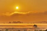 Rising Sun Over Ground Fog 90D04302-6