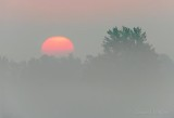 Red Sun Rising Through Fog DSCN68623.4