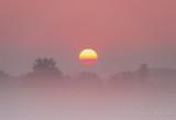 Sun Rising Through Fog 90D04272-6