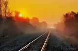 Rails Into Sunrise Fog 90D04286