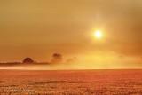 Sun Rising Over Ground Fog 90D04960-4