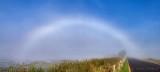 Fogbow DSCN71954.7
