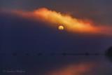 Harvest Full Moon Setting Into Fog 90D05675