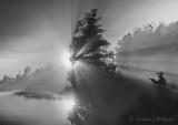 Harvest Moon-Rays 90D05643-7BW