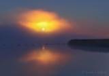 Harvest Full Moon Setting Into Fog 90D05672