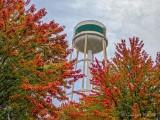 Early Autumn Color DSCN72774