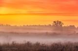 Sunrise Ground Fog 90D06069-3
