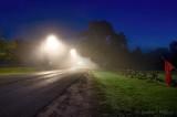 Old Slys Fog 90D06019-3
