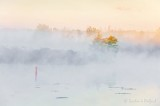 Misty Rideau Canal At Sunrise 90D06154