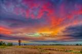 Clouded Sunrise 90D06205-9