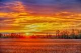 Clouds At Sunrise 90D06325-9