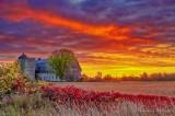 Barn In Autumn Sunrise 90D07298-02