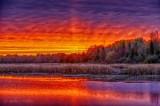 Irish Creek Sunrise 90D07901-5