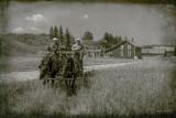 Bar U Ranch II