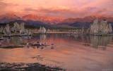 Mono Lake at Dawn II