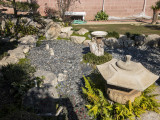 The retired koi pond