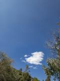 Blue Skies and clean air