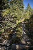 Hiking along the creek