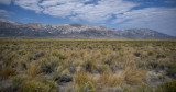 Ruby Mountains on NV 229