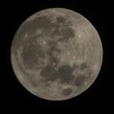 The Blue Hunter's Moon