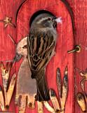 Visiting Birds