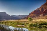 Along the Grand River 2.jpg