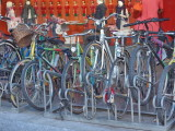 Bicycles with Pinocchio