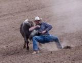 2019 Tucson Rodeo #1