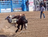 The Tucson Rodeo