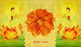 Bodhi Swaha