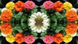 Flower Ornament Sutra