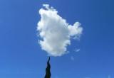 Bonus Cloud