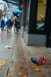 Vancouver Downtown Eastside